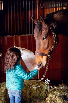 OTTB Hugo being presented with a child's drawing / Photo Credit: Cecillia B Photography