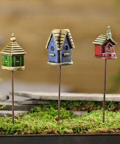 Loving this Mini Birdhouse Pick Set on #zulily! #zulilyfinds
