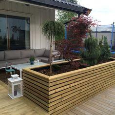 Plantekasse Planters in 2019 Raised garden beds Terrace Garden Balcony Garden Back Gardens, Outdoor Gardens, Backyard Patio, Backyard Landscaping, Plant Box, Terrace Garden, Balcony Gardening, Garden Boxes, Garden Ideas