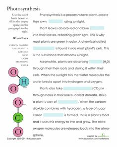 Printables Biology Worksheets With Answers worksheets and transcription on pinterest life science biology math social studies edu cells 4th plants teaching education
