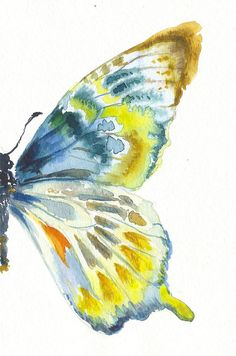 Blue Gold Butterfly Wing by AquaColour on Etsy, $20.00 Butterfly Painting, Butterfly Watercolor, Butterfly Art, Watercolour Painting, Painting & Drawing, Watercolors, Butterfly Template, Watercolor Techniques, Art Techniques
