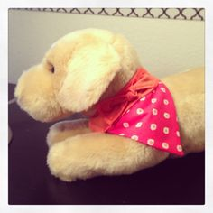 Dog Bandana  Pink Polka Dot with Orange Band and by SpottedDogShop, $7.95