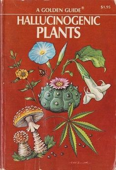 A Gloden Guide: Hallucinogenic Plants