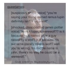"""I remember reading Harry Potter and being like """"That dude is totally a werewolf or I'm failing Latin""""."""