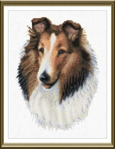 This is my latest cross stitch project, make the changes to reflect Casey, it's pretty close