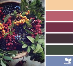 { color picks } image via: @_ewabakrac
