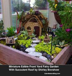 miniature and fairy garden design ideas by shirley bovshow, container gardening, flowers, gardening, home decor, succulents, This mini garden features a succulent roof among other details Can you see a common theme running through this garden Look closely