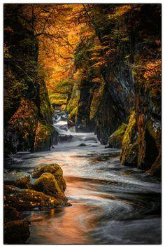 Fairy Glen, Conwy Valley, Wales, United Kingdom; photo by .Tim ...
