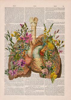 Flowery Lungs and herat human Anatomy Print . Anatomy by PRRINT