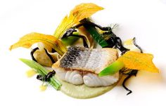 Sea bass is served with fennel purée and prawn tortellini in this sea bass recipe from Simon Hulstone. The prawn tortellini recipe can be used for many other dishes Fish Recipes, Seafood Recipes, Recipies, Fennel Recipes, Tortellini Recipes, Great British Chefs, Wine Sauce, Sea Bass, Prawn
