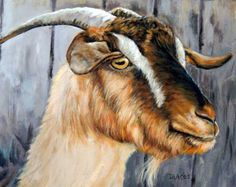 Cashmere Goat Farm Art Original Painting 16x20 by DottieDracos