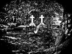 Together forever.  Leigh Coastal Cemetery NZ 2012