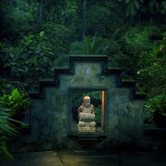 Bali once again, a temple being taken by the rainforest. So beautiful. #Bali #rainforest