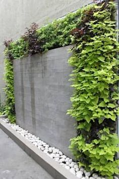 20+ Modern Vertical Fence Gardening Ideas To Beautify Your Backyard