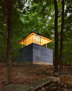 glass and concrete cube in the middle of a wooded landscape, designed as a personal library and study by New York City architectural firm Gluck+.