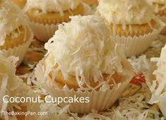 coconut cupcakes; fluffy, moist, sweet; ground sweetened coconut, extra egg whites, and coconut milk in the cake; swiss meringue buttercream frosting spiked with coconut extract, and finished with a sprinkling of sweetened coconut