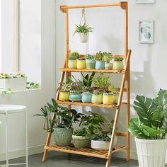 Bay Isle Home Roxanne 3 Tier Bamboo Ladder Bookcase   Wayfair Wood Ladder, Ladder Bookcase, Ladder Decor, Plant Ladder, Hanging Plants, Potted Plants, Indoor Plants, Hanging Bar, Indoor Plant Shelves