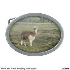 Brown and White Alpaca Belt Buckles