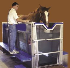 Despite their strength and grace, horses can be notoriously prone to a range of injuries, from torn tendons and ligaments to fractured bones. Over the past two decades a host of rehabilitation technologies have emerged, all intended to speed up recovery from various lamenesses. How do these therapies work? How effective are they? Find out at www.horsejournals.com/equine-lameness-emerging-technologies-rehabilitation. Photo courtesy of Hudson Aquatic Systems.