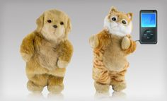 Cobra Digital Party Animal Dancing Cat or Dog Speaker: Cobra Digital Party Animal Dancing Cat or Dog Speaker Dancing Cat, Partner Dance, Animal Party, Funny Animals, Funny Pets, Cute Cats, Your Pet, Plush, Just For You