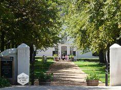 Boschendal is een van de oudste wijnhuizen uit de regio (300 jaar), en ook een van de bekendste. Hier kom je om van de mooie landhuizen en tuinen te genieten, de wijn te proeven, het winkeltje met gekke kunstobjecten te bekijken, maar vooral: om te picknicken | Photo: Boschendal Wine Estate, South Africa