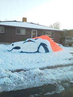 Love this Denver Bronco fan!!! I saw this in real life, amazing!