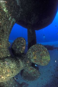 The wrecks of tug boat St. Micheal and Tug number 10, South Malta. Take a look at this wonderful propeller close-up.