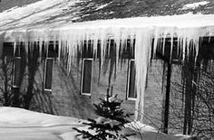 """The unusually high heat loss on this roof has caused both an ice dam and icicles. The photograph below right illustrates unusually high heat loss from the roof. There is very little snow left on the roof and at its edge is both an ice dam and a """"beautiful"""" row of icicles."""