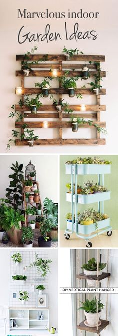 20 Marvelous Indoor Garden Ideas Combating Lack of Space or Harsh Weathers! 20 Marvelous Indoor Garden Ideas Combating Lack of Space or Harsh Weathers! 20 Marvelous Indoor Garden Ideas Combating Lack of Space or Harsh Weathers! Types Of Herbs, Backyard Garden Landscape, Garden Landscaping, Gravel Garden, Garden Oasis, Concrete Garden, Wooden Garden, Landscaping Ideas, Hydroponic Gardening