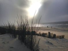 Beach Boardwalk, Storms, Free Photos, Seaside, Holland, Beaches, Coastal, Waves, Autumn
