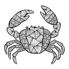 crab tattoo: Stylized vector crab, zentangle isolated on white background. Sea collection for your design. Illustration
