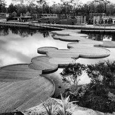 Water lily walkway/bridge in the Cranbourne Gardens, Melbourne, Australia @adamjhamilton7 Instagram photos