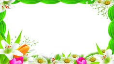 Floricultura 0002