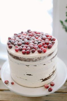 Rustic Wedding Cake Topped with Sugared Cranberries | Jacque Lynn Photography and Michelle Leo Events | Enchanting Woodland Wedding Shoot with Rustic Winter Details
