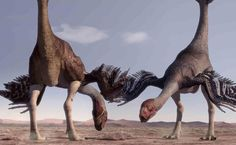 Gigantoraptor, as it was subsequently named, is the largest feathered dinosaur discovered to date.