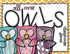 What the Teacher Wants!: All Over Owls {Classroom Decor}