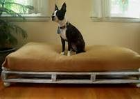 This would be great for our Rottie pups... make big enough so they can use when full grown.