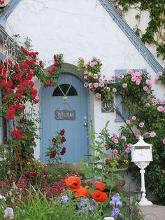 Bit twee but still pretty and love the door colour!     Roses over the doorway