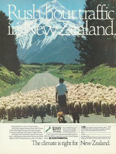 New Zealand Travel & Tourism Original 1988 by VintageAdOrama, $9.99