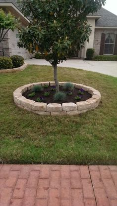 Little garden around an old tree stump with paver stone for Tree edging border ideas