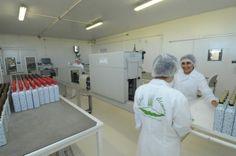 Um a um, os produtos da Vital Âtman recebem o sleeve e, depois, são agrupados. http://www.vitalatman.com.br/prensagem-a-frio/