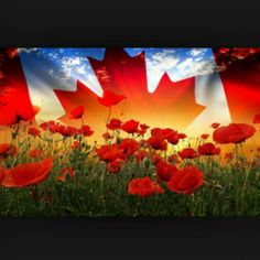 We remember them! Remembrance Day, We Remember, Painting, Art, Painting Art, Paintings, Kunst, Paint, Draw