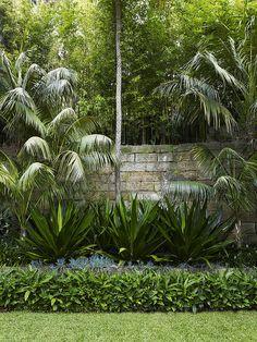 Landscaping Small Back Gardens - tropical garden ideas Florida Landscaping, Tropical Landscaping, Landscaping With Rocks, Modern Landscaping, Backyard Landscaping, Tropical Patio, Landscaping Design, Patio Design, Small Back Gardens