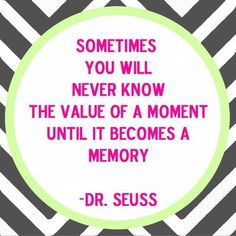 Sometimes you will never know the value of a moment until it becomes a memory -Dr. Seuss