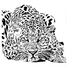 Tattoo Stencils, Stencil Art, Animal Stencil, Cute Animal Drawings, Scroll Saw Patterns, Black Animals, Animal Design, Colouring Pages, Pyrography