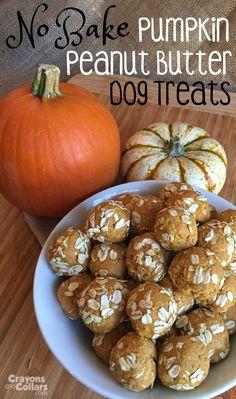 No bake peanut butter pumpkin dog treats