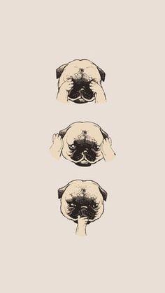 Resultado de imagem para pug wallpaper tumblr