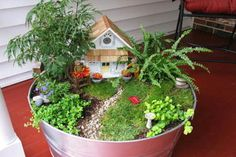 Fairy gardens ---- Seriously awesome!! So my new hobby after the move!