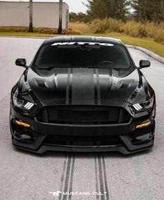Mustang Cult