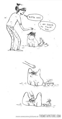Petting a cat / hahahahaha, yep. they seem to manipulate the fabric of time and space!